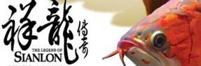 分宜水族批发市场 分宜水族馆 分宜龙鱼